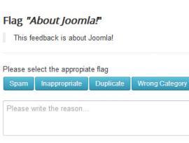 Flag feedback