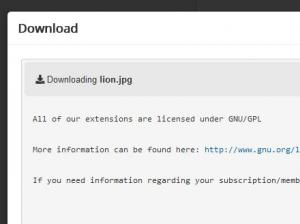 Direct download License Agreement