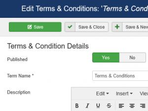 Editing the 'Terms & Conditions'