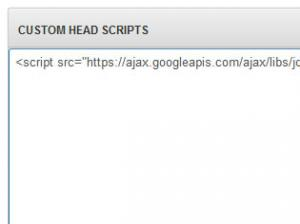 Custom Head Scripts JavaScript