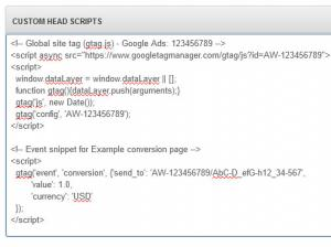 Custom Head Scripts Google AdWords