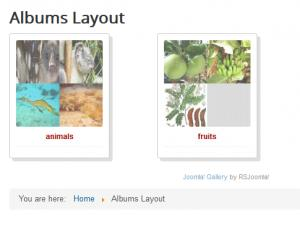 Albums Layout menu item in the frontend