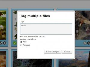 Tagging multiple images