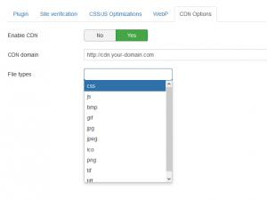 RSSeo! System Plugin - CDN Options