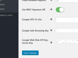 Google Web Risk API Key