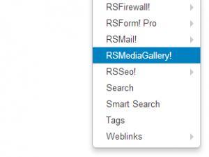 RSMediaGallery!