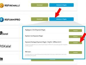 RSForm!Pro Payment Plugin
