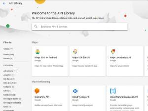 Google Web Risk API - search for API