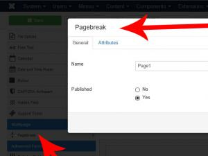 Adding the PageBreak field