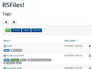 File tags menu item