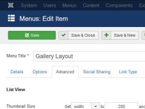Gallery Layout menu item advanced configuration tab