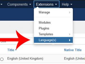 Go to Extensions > Languages
