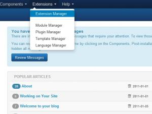 Click on Extensions >> Extension Manager