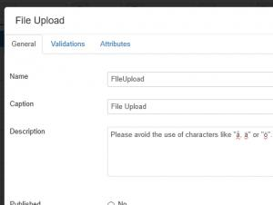 File upload field description