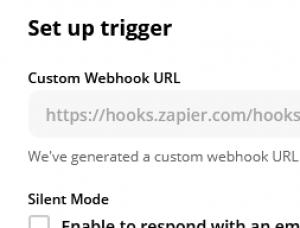Copy the Custom Webhook URL