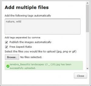 Add Multiple Files