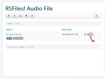RSFiles! Preview audio file