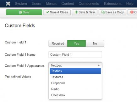 Fields Configuration - Custom