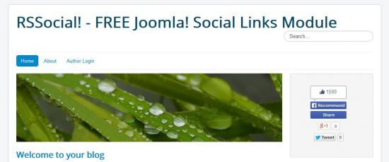 Social links on homepage