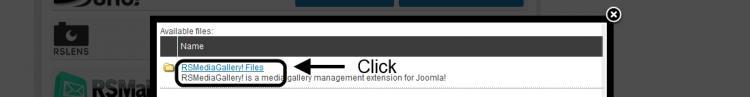 Click RSMediaGallery! Files