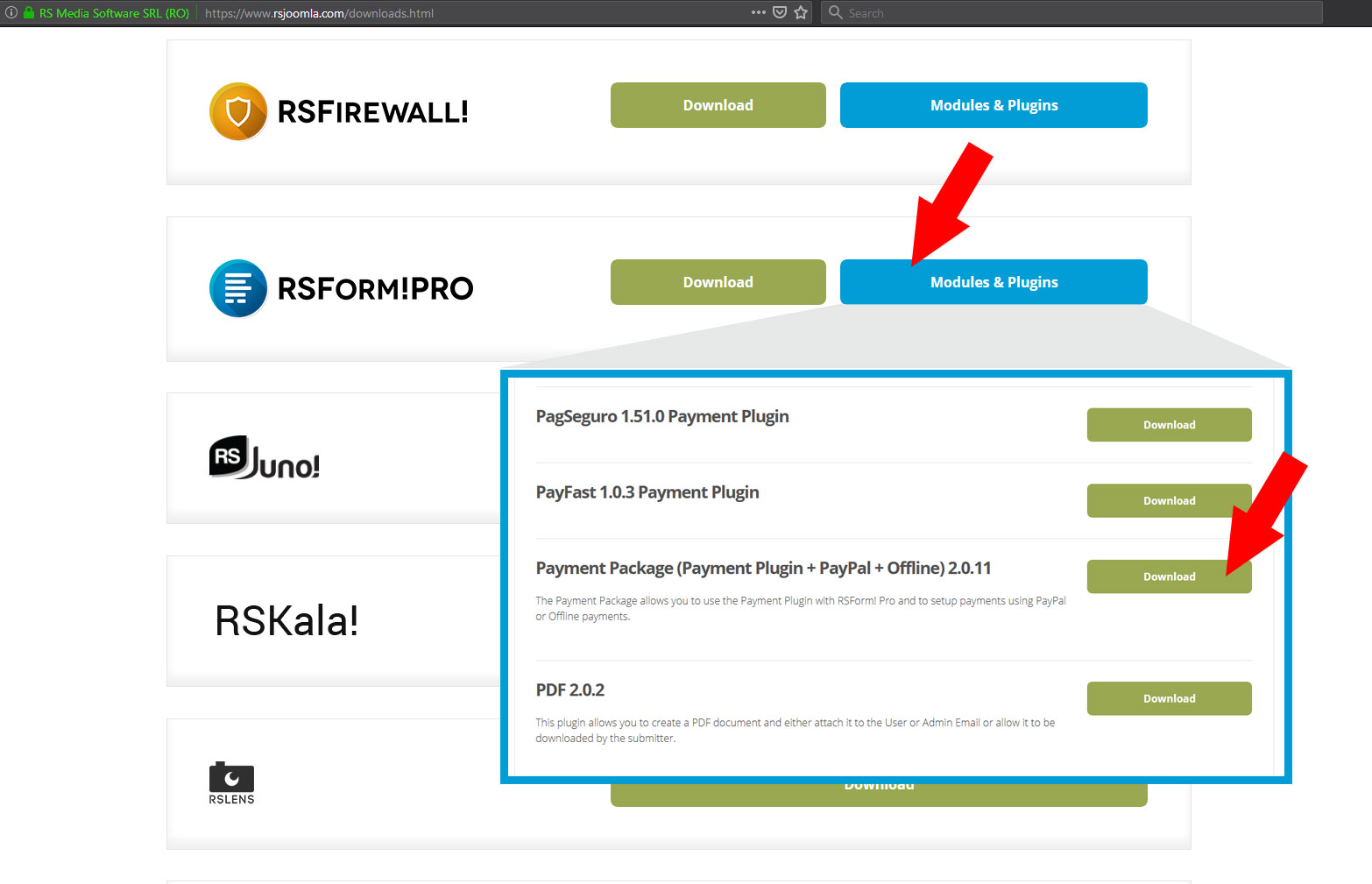 RSForm! Pro - New Payment Plugin