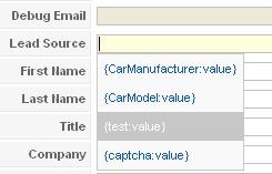 Salesforce RSForm!Pro integration fields
