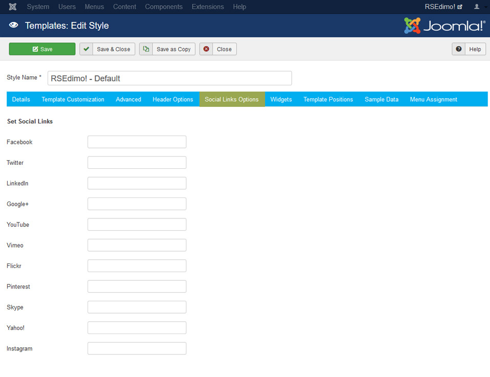 RSEdimo! Joomla! 3.x template Social Links Options Tab preview