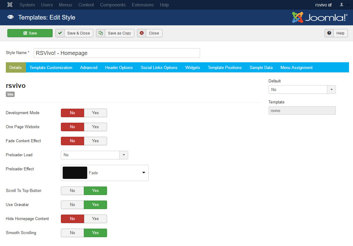 RSVivo! Joomla! 3.x template Details Tab preview